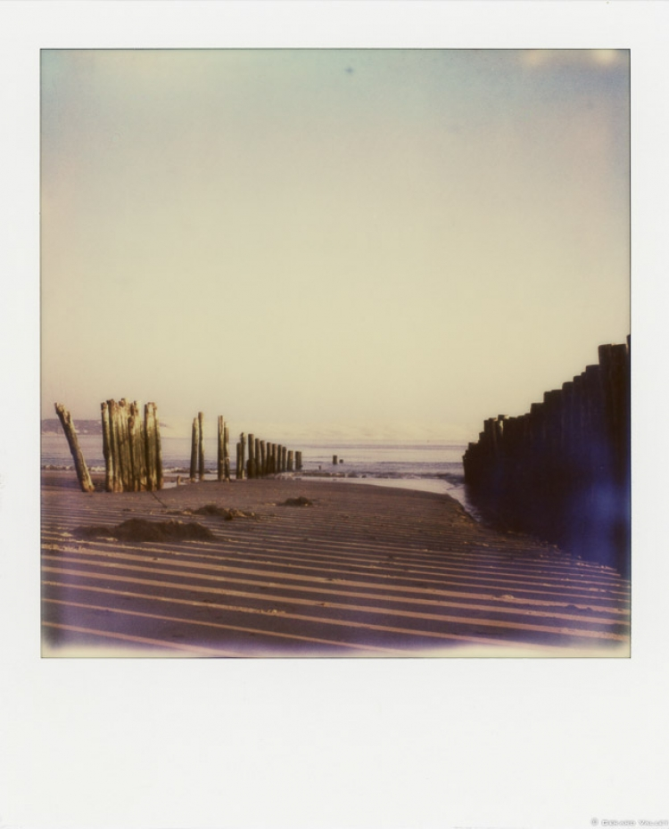 Pointe du Cap Ferret, Polaroid SLR670 + Impossible color 600