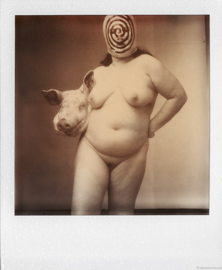 Tête de cochon catcheur, Florence, Polaroïd SX70 + Impossible color 100
