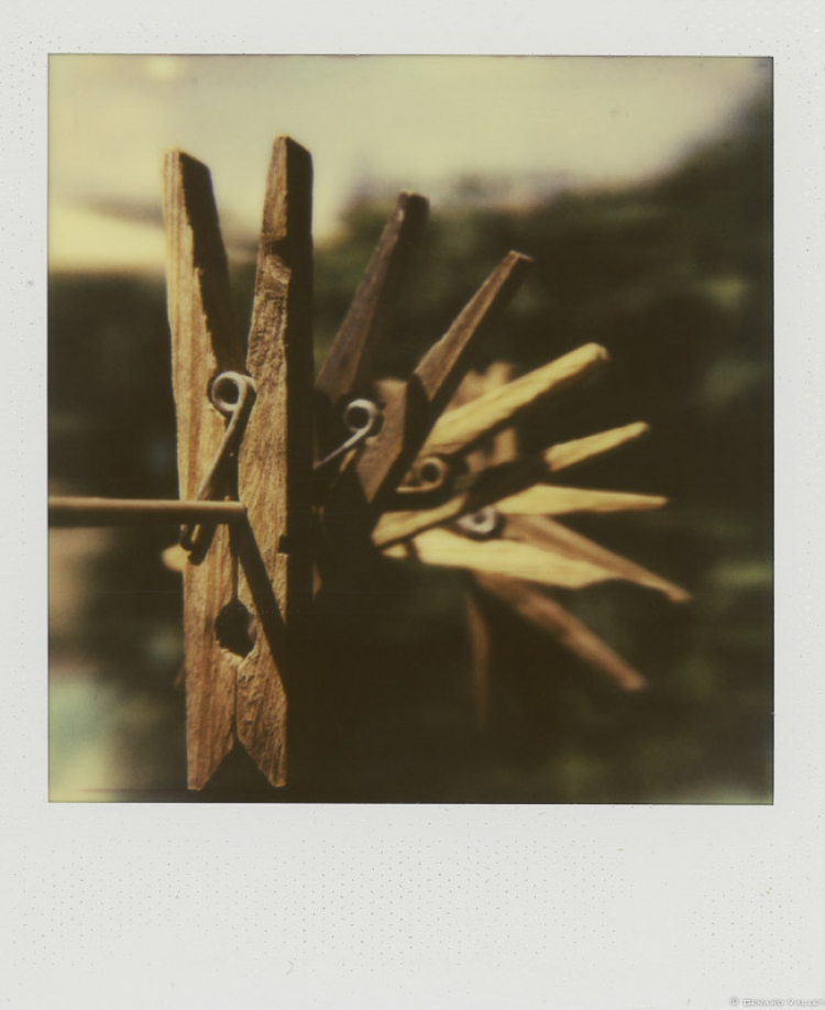 Epingles sur le fil, Polaroid SLR670 + Impossible color 600