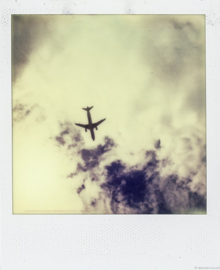 Fly away, Polaroïd SLR670 + Impossible color 600